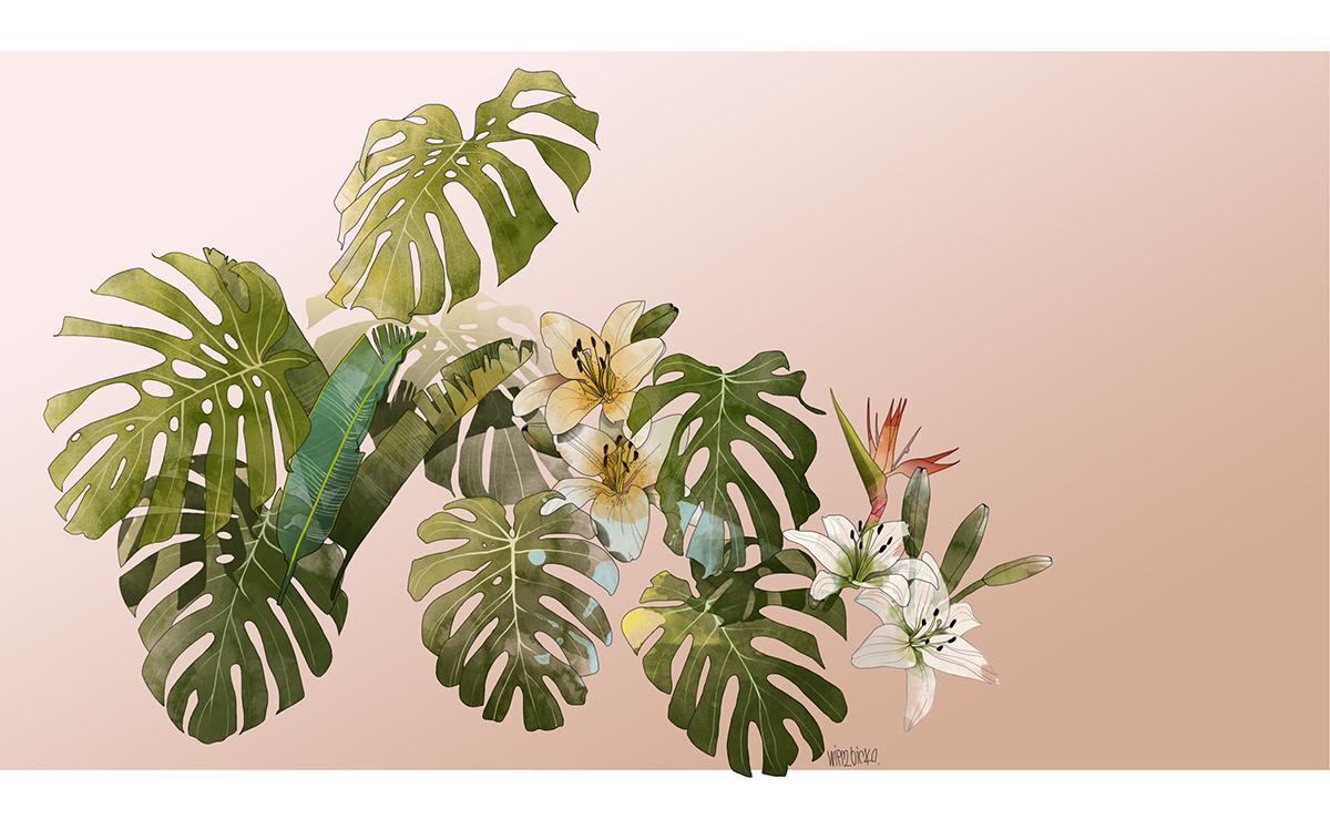botanic wierzbicka illustration. Black Bedroom Furniture Sets. Home Design Ideas