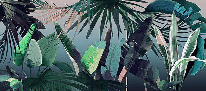 1_Illustration_Tropical