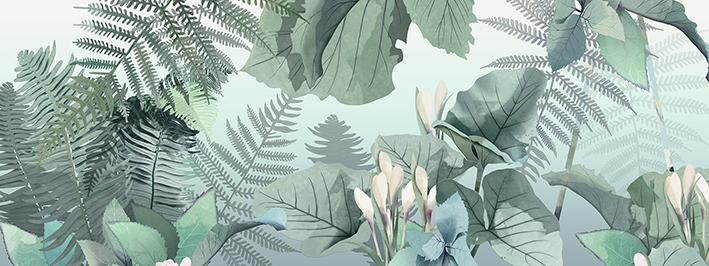 2_Illustration_Forest